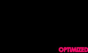 NetWellth-Logo
